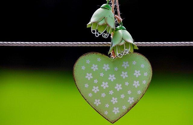 Free Images greeen leaf heart