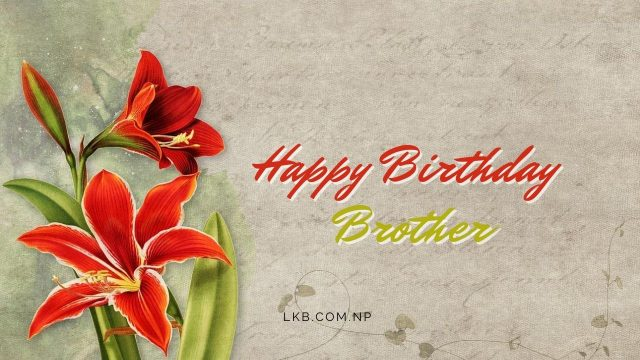 Flowers greeting card brother birthday
