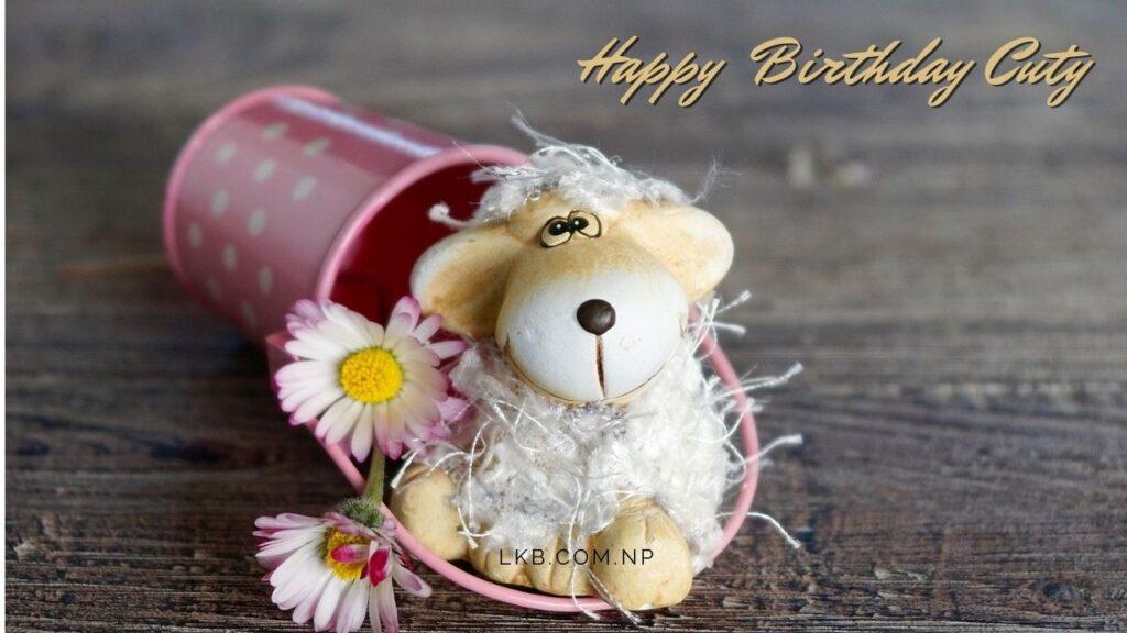 cute rabbit doll birthday love
