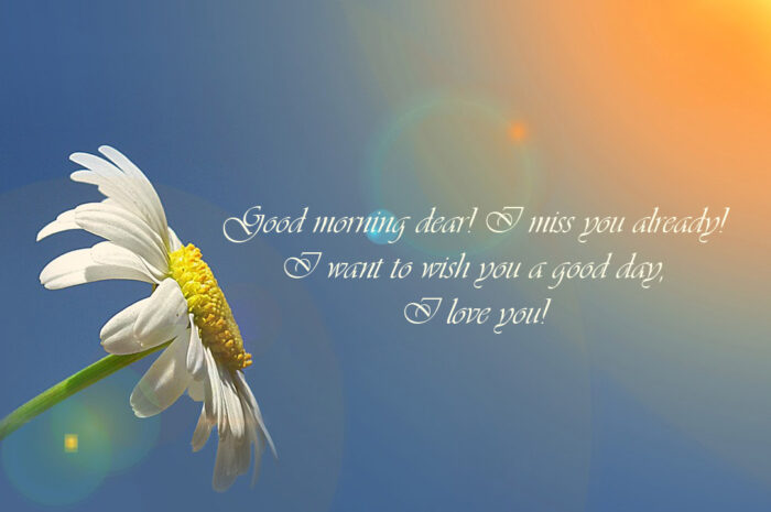 500+ good morning message! good morning message to my love